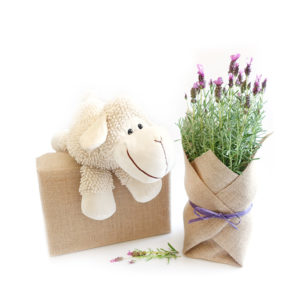 Lavender Lamb Soft Toy Gift Set