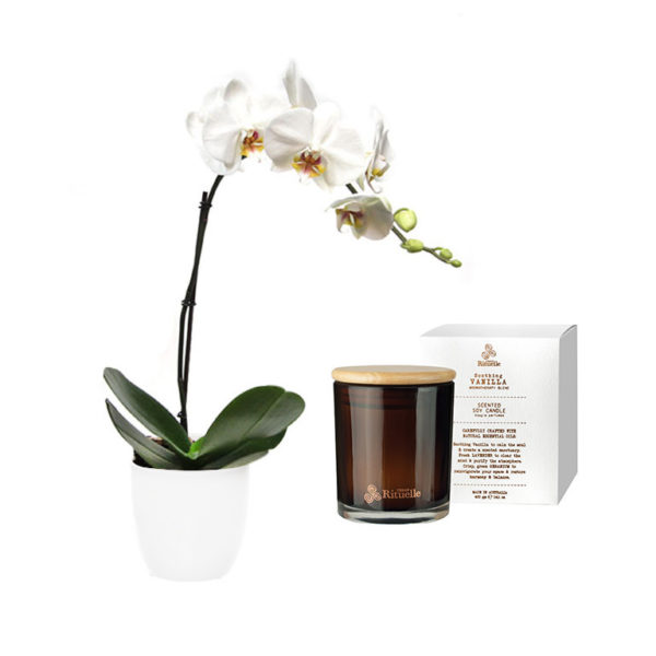White Orchid Soy Candle Gift Set