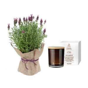 Lavender Hessian Wrap Soy Candle