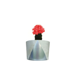 Cactus Red Silver Concrete Pot