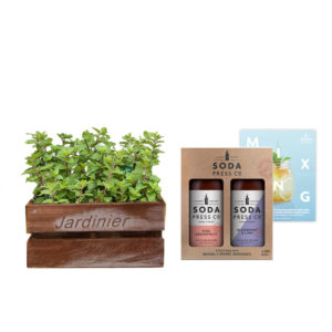 Herb Mint Duo Soda Press Co Grapefruit Blueberry