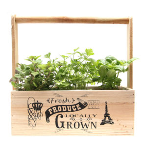 Small Herb Trio Wooden Carry Box