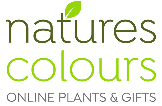 Natures Colours Online Plants & Gifts