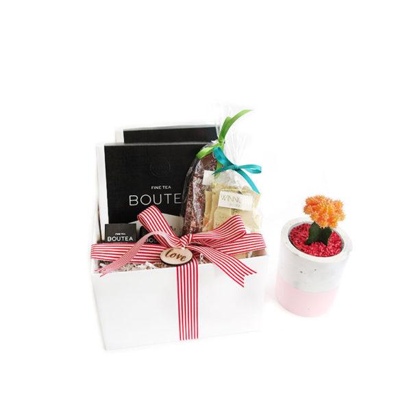 Cactus Living Gift Set Plants Gift Hamper Love