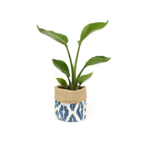 Bird of Paradise Planter Bag Blue